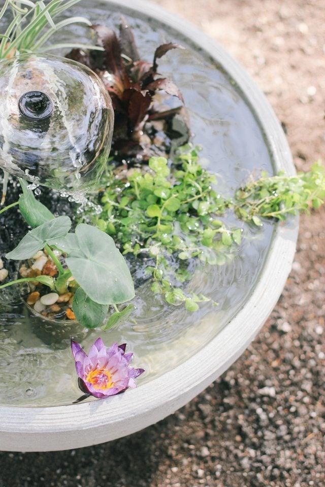 Tolle Gartenideen für wenig Geld - Mini-Brunnen im Topf für den Balkon