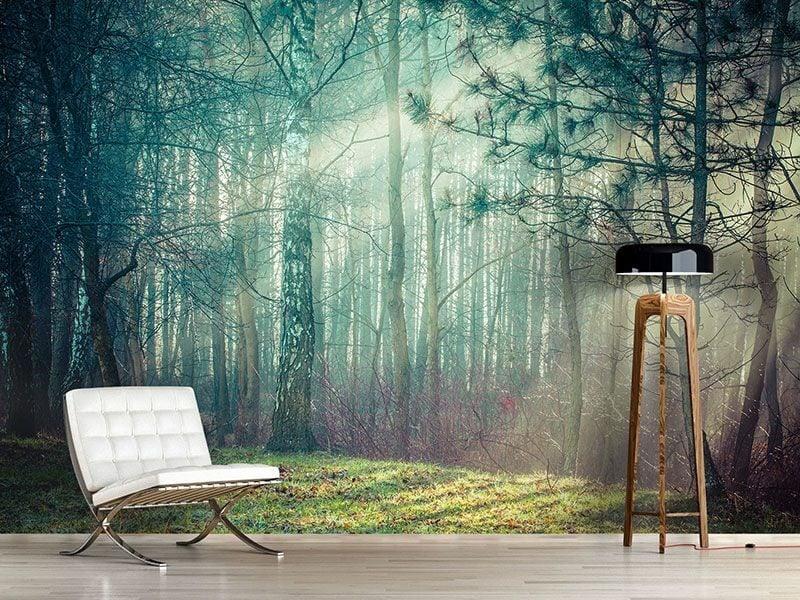 Fototapete Wald Wohnzimmer stilvoll realistisch