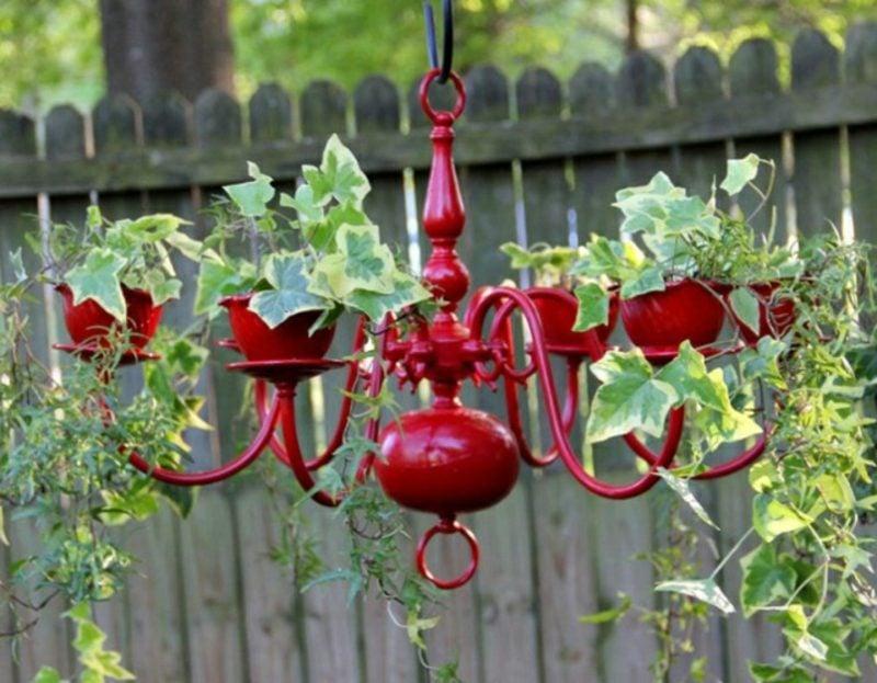 Gartenideen für wenig Geld Kronleuchter Kletterpflanze