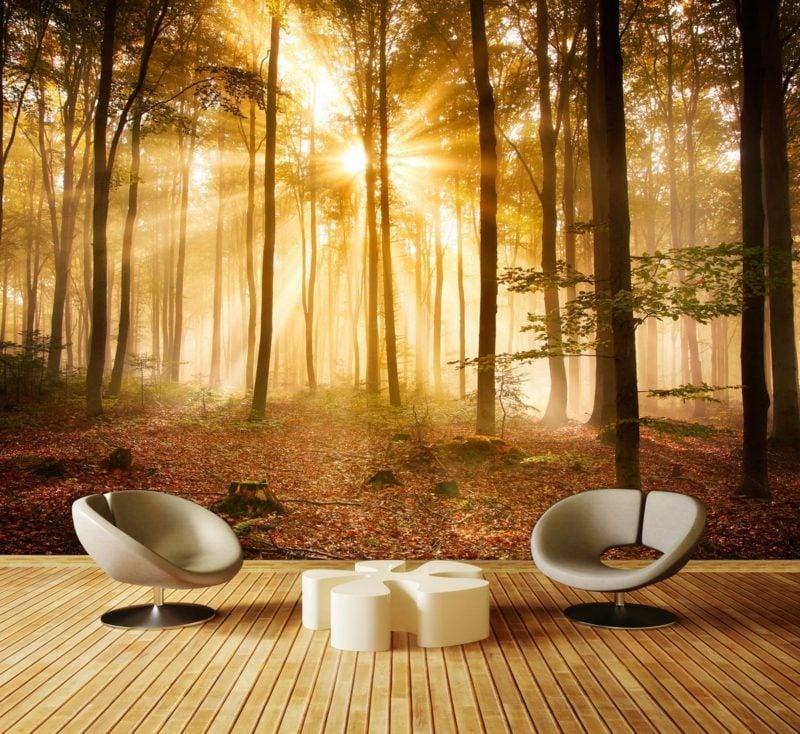Fototapete Wald als Akzent im Wohnzimmer herrlicher Look