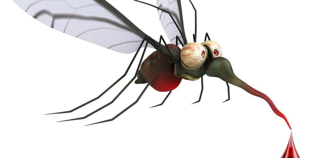Pflanzen für Mückenschutz