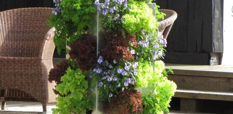 Gestaltung kleiner Garten vertikaler Garten