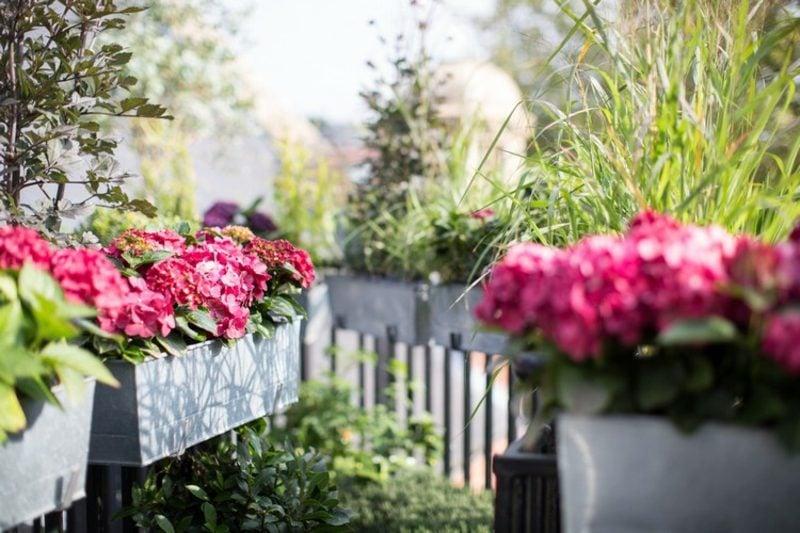 Balkongestaltung mit Pflanzen Blumenkasten Metall