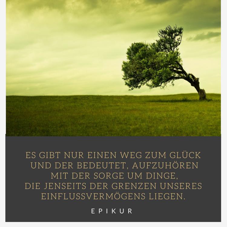 Sprüche Lebensweisheiten Zitat Epikur