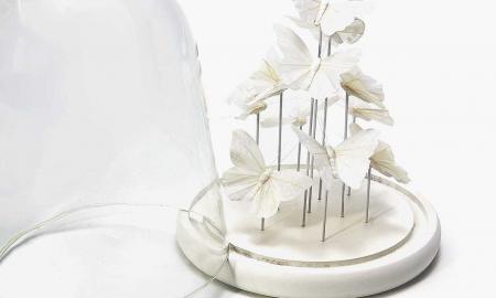 Sind Sie auch von der natürlichen Schönheit der Deko Glocke bezaubert? Dann lesen Sie unsere Anleitung für eine Glasglocke mit Schmetterlingen.