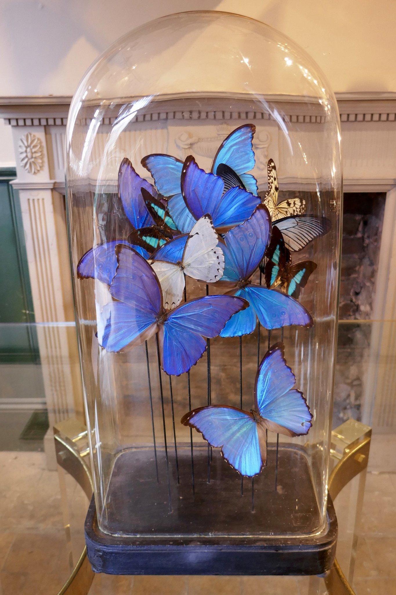 Die Hochzeitstische mit Glasglocke dekorieren