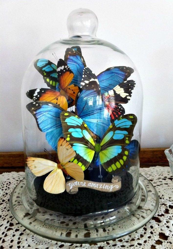 DIY Schmetterlinge unter einer Glasglocke