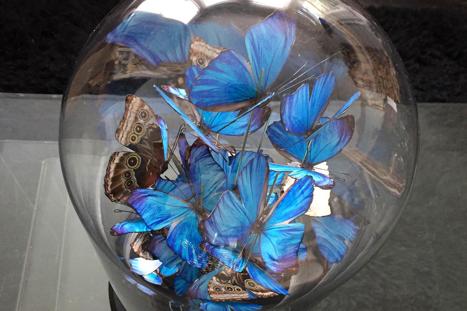 Geschenkideen: DIY runde Glaskuppel Deko