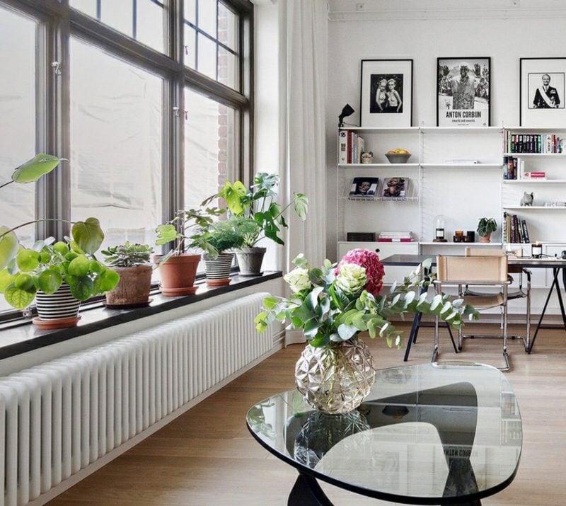 Fensterbank innen Blumen auswählen