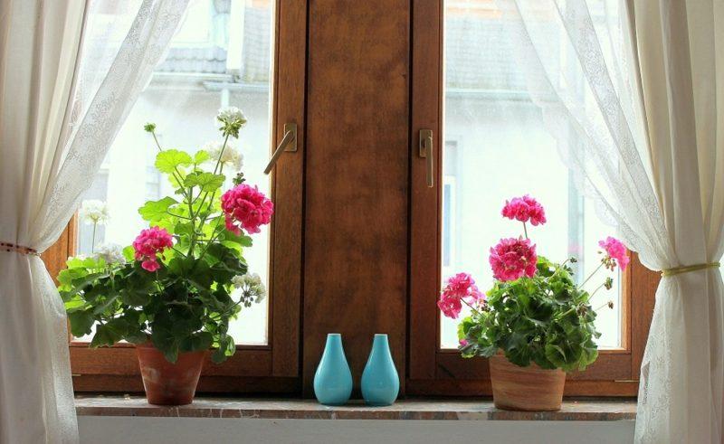 Fensterbank Innen Mit Blumen Verschonern Ideen Und Tipps