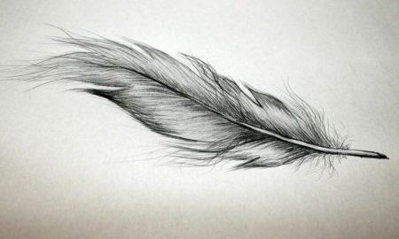 Feder Tattoos 22 Ideen