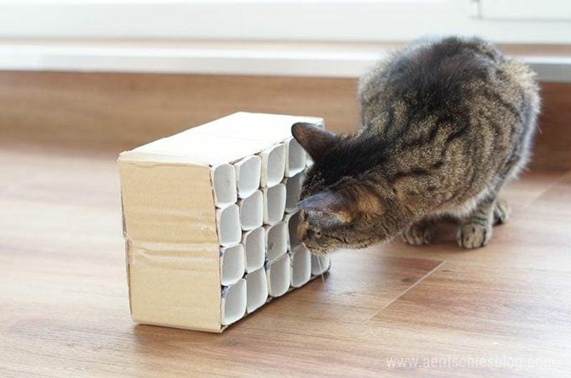 Katzenspielzeug selber machen Fummelkiste
