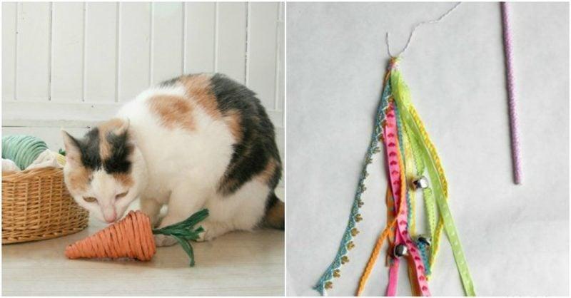 Katzenspielzeug selber machen Karotte