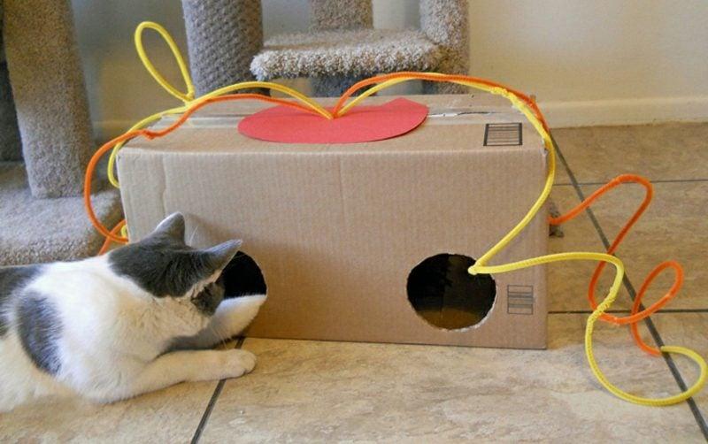 Katzenspielzeug selber machen Mauslöcher Karton leer