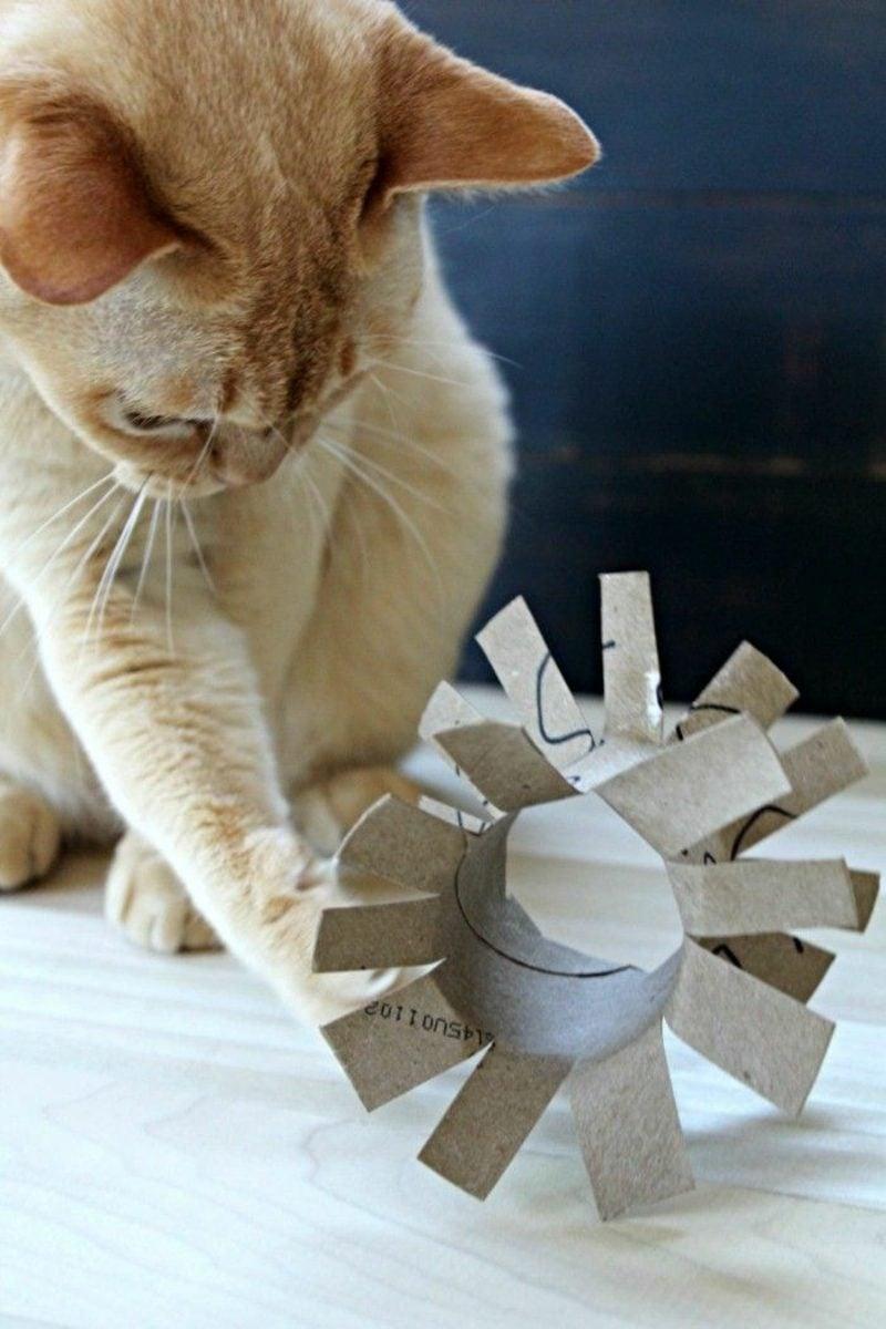 Katzenspielzeug selber machen Ideen mit Klopapierrollen