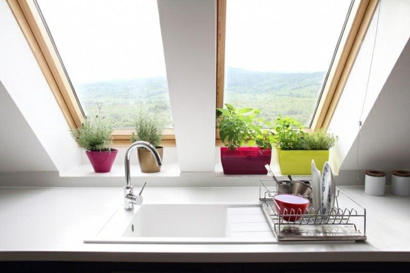Fensterbank innen Küche Kräuter
