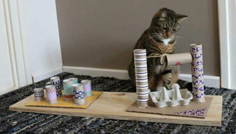 Katzenspielzeug selber machen interessante Ideen mit Klopapierrollen