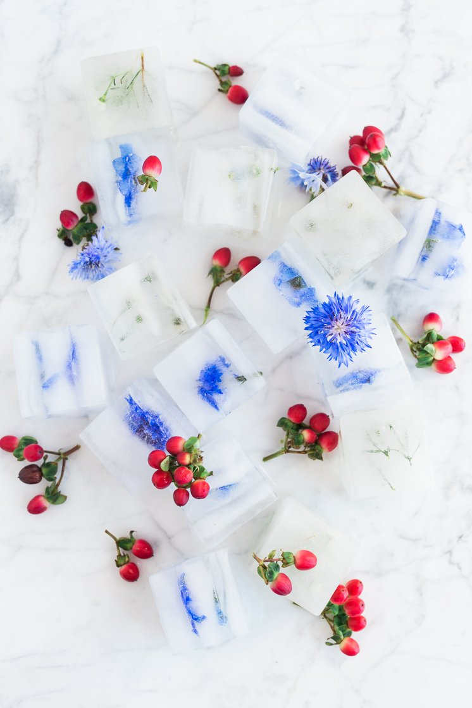 Andere viele Ideen für Eiskübel Deko und tolle Inspirationen für Eiswürfel selber Machen:
