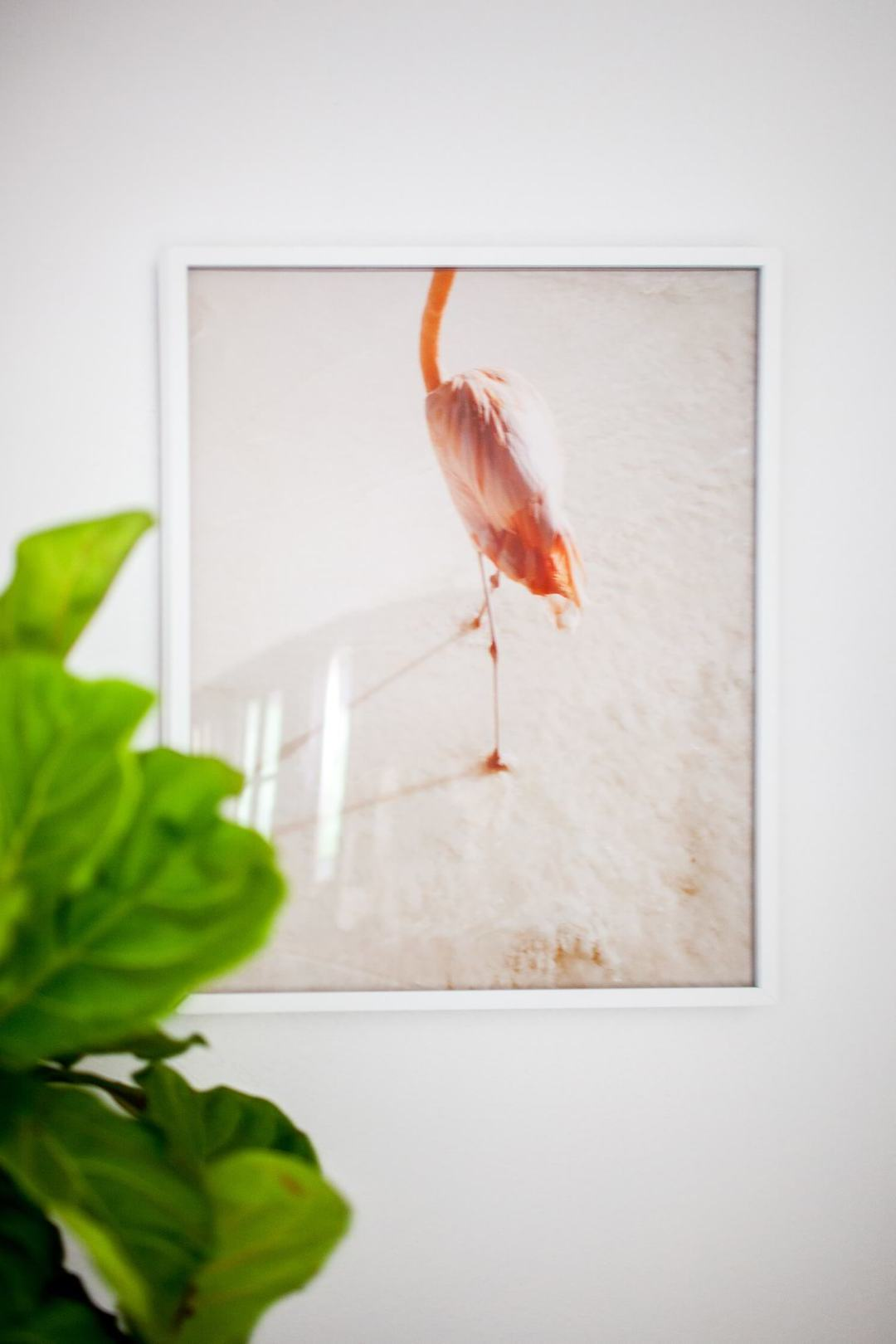 Wanddeko Wohnzimmer Flamingo
