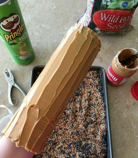 DIY Vogelfutter selber machen mit Pringles Dosen basteln