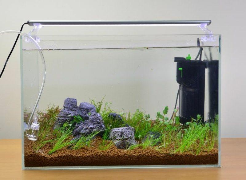 Aquarium Deko Technik installieren