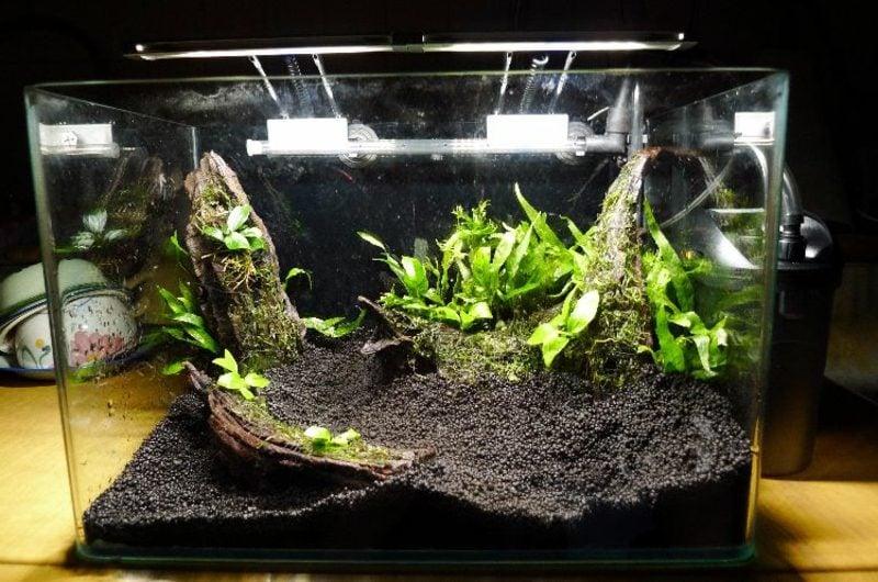 Aquarium Deko Hard- und Softscape