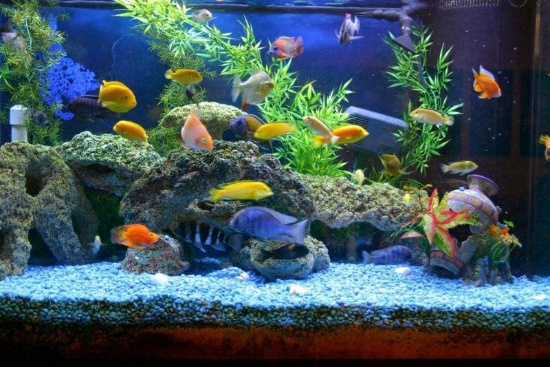 Aquarium Deko Kies bunt Felsen Imitation Wasserpflanzen