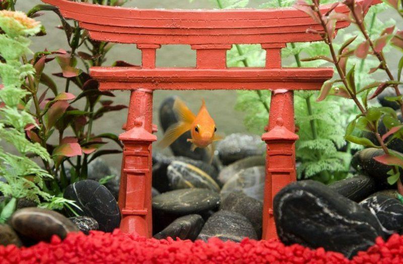 Aquarium Deko japanisch Goldfische