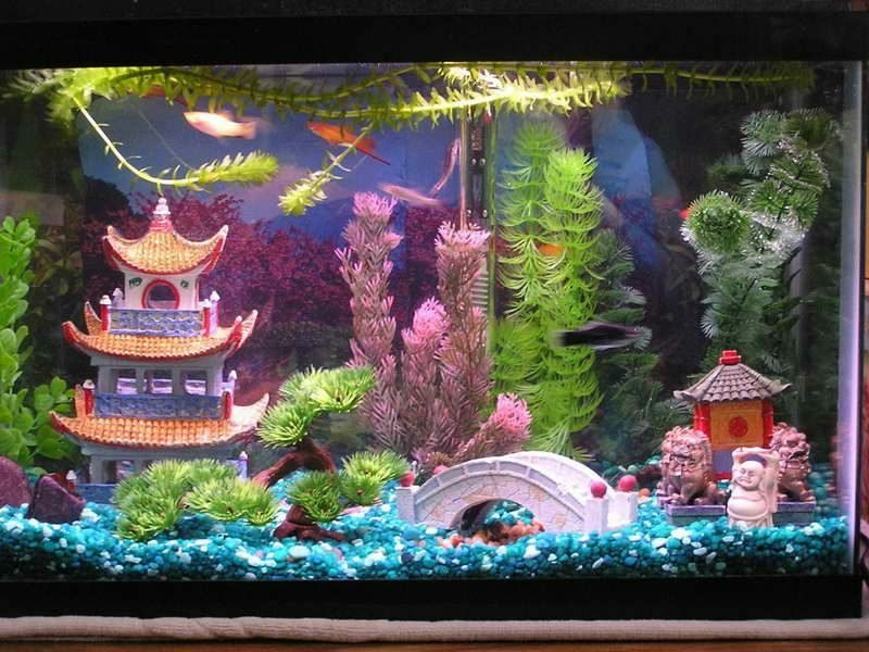 Aquarium Deko japanischer Stil
