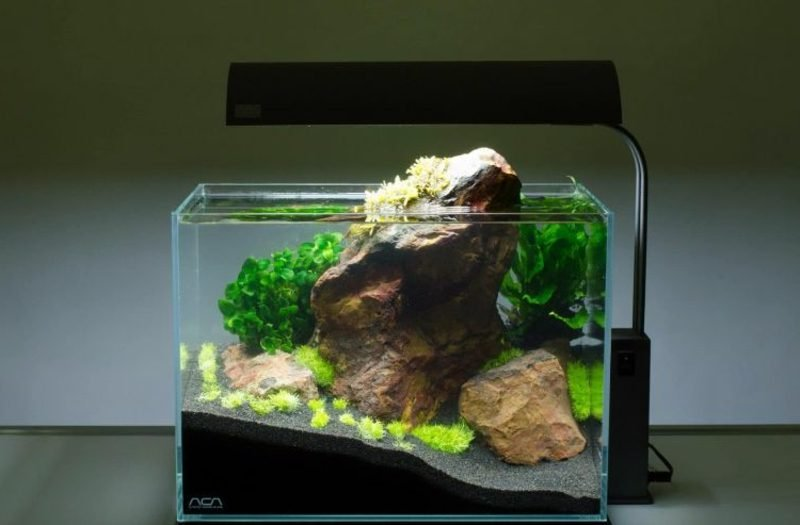 Aquarium Deko Fels gross Wasserpflanzen