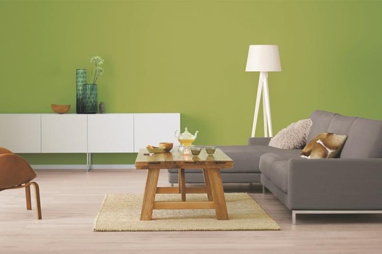 Khaki Farbe Wohnzimmer stilvolles Ambiente