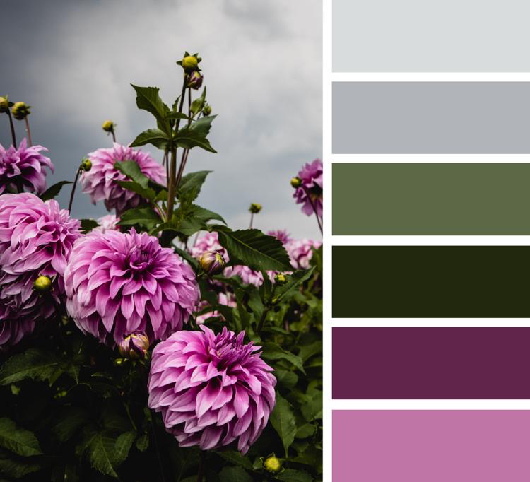 Khaki Farbe kombinieren mit Grau und Lila