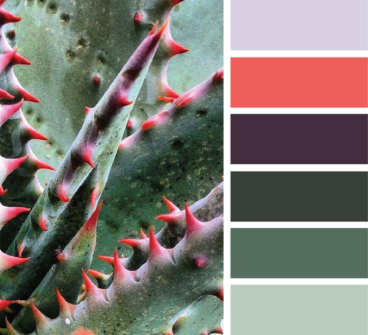 Khaki Farbe kombinieren mit Korallrot