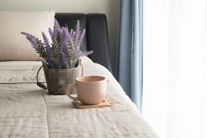 Pflanzen im Schlafzimmer beruhigend Lavendel