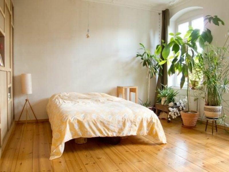 Pflanzen im Schlafzimmer Vor- und Nachteile