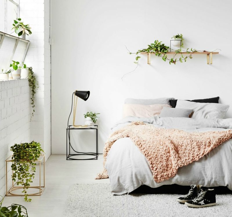 Pflanzen im Schlafzimmer sind sie schädlich
