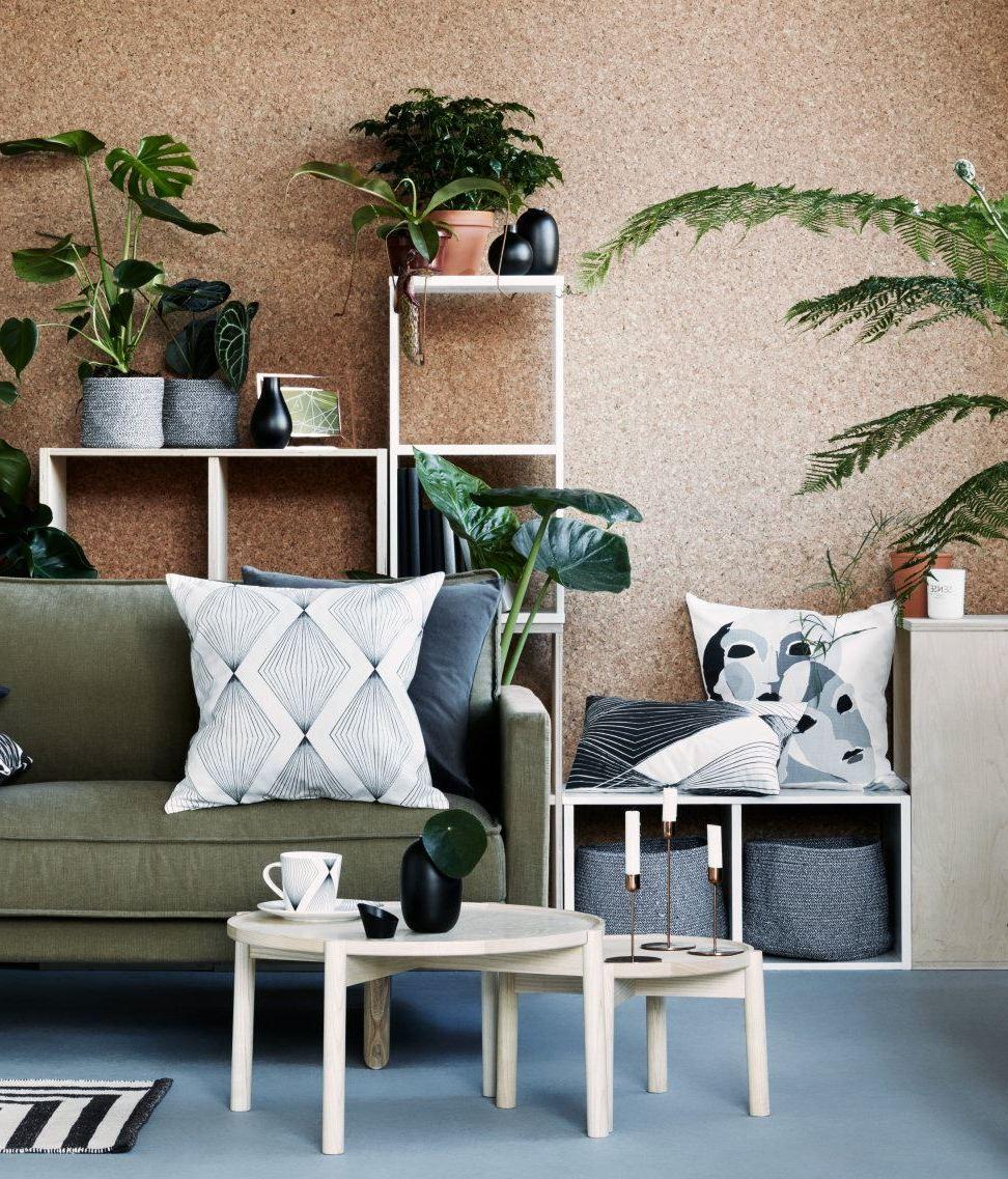 Zimmerpflanzen - Der kleine Urwald für zuhause