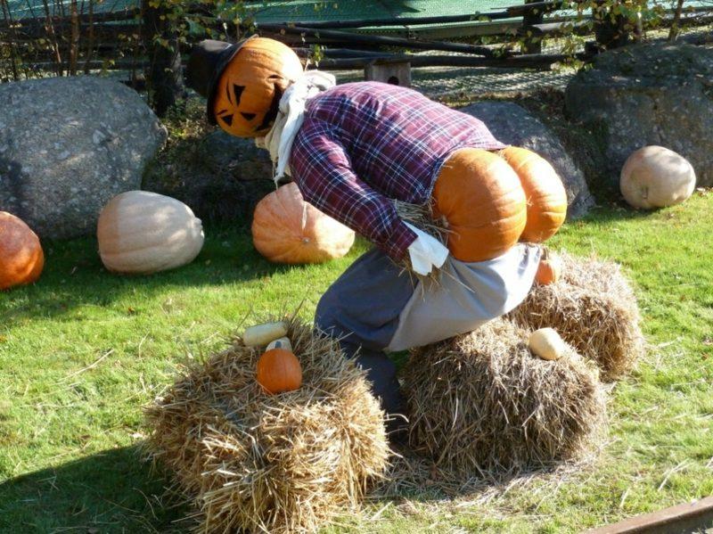 Halloween Deko selber machen für drauβen lustig