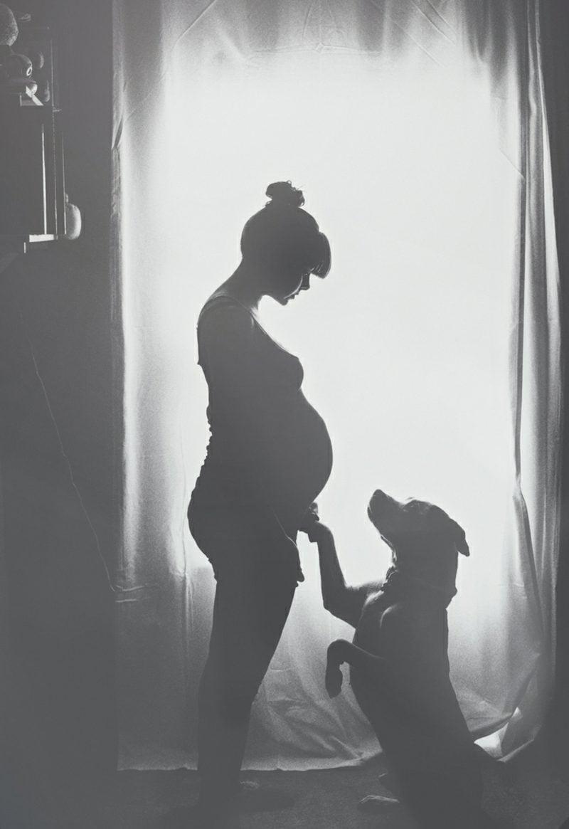 Schwangerschaftsfotos aufnehmen mit dem Hund