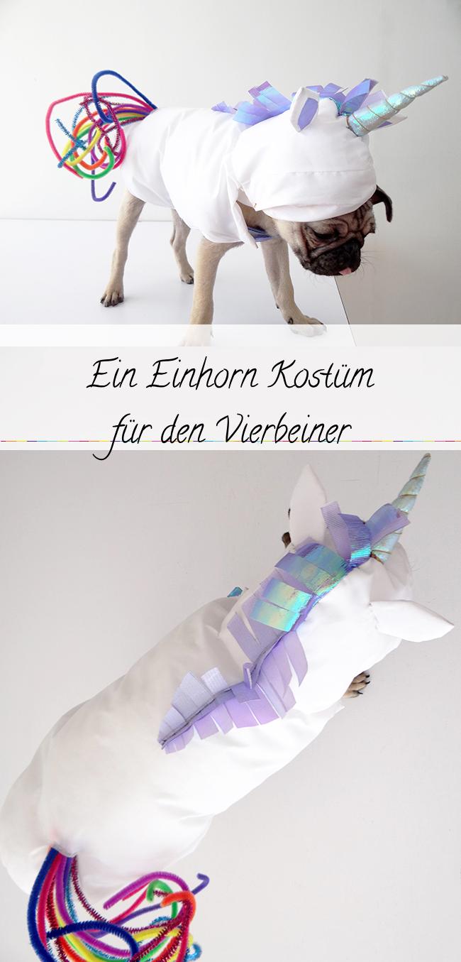 DIYEinhorn Kostüm für einen kleinen Hund