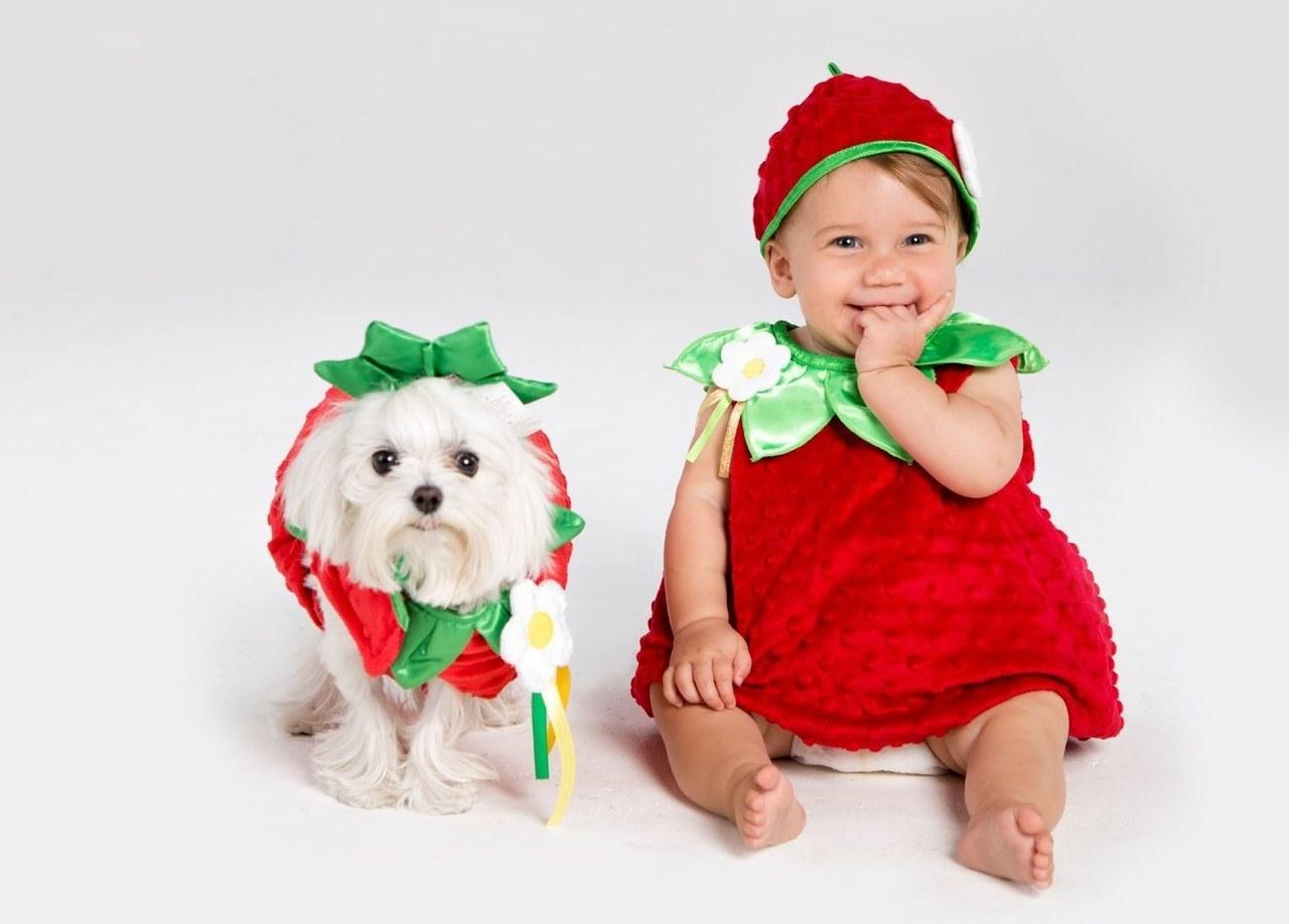 Eine gelungene Kombination: Passen Sie Ihr Baby Kostüm zu einem Hund Kostüm für Halloween!