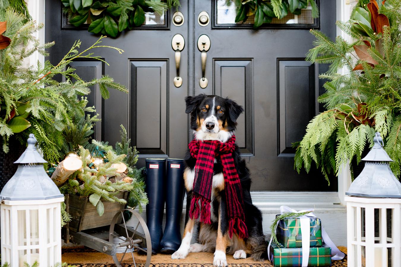 """Sagen Sie """"Herzlich Willkommen in unserem weihnachtlichen Paradies!"""" ohne Wörter - nur mit der richtigen Weihnachtsdeko draußen"""