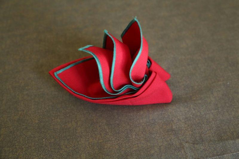 Servietten falten einfach und wirkungsvoll Paradiesvogel DIY