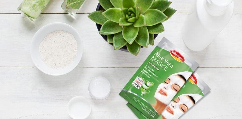 Maske gegen Mitesser mit Aloe Vera selber zubereiten