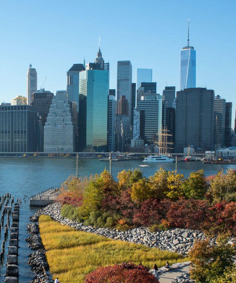 USA Rundreise New York Central Park