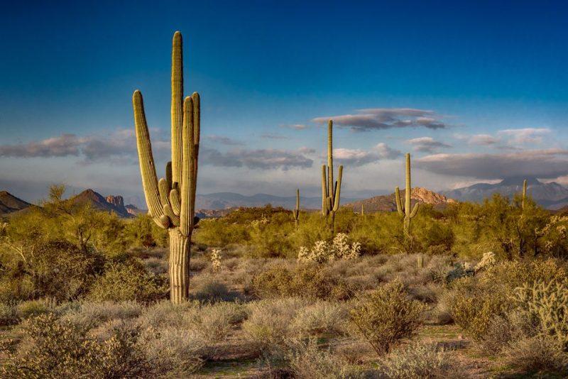 USA Rundreise Landschaft Arizona