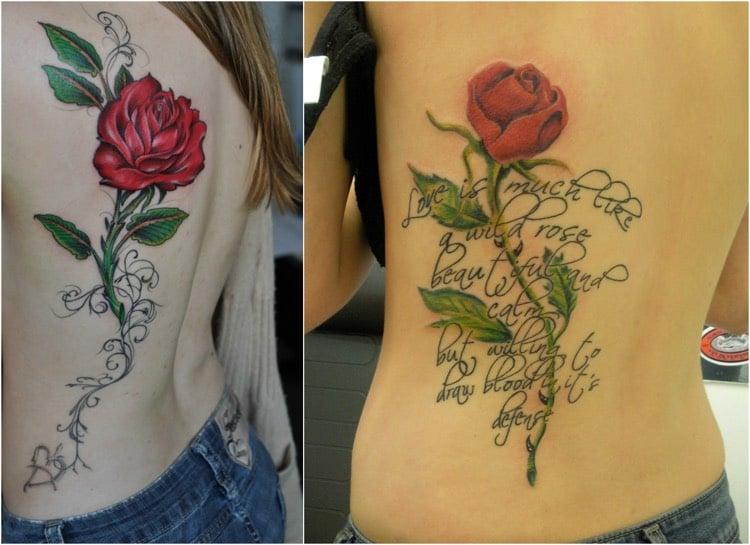 Tattoo Ranke Rose Schrift farbig