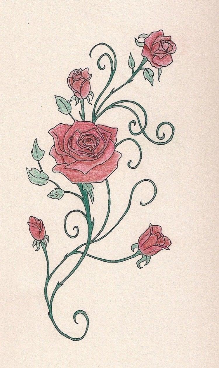 Tattoo Ranke Rosen Zeichnung