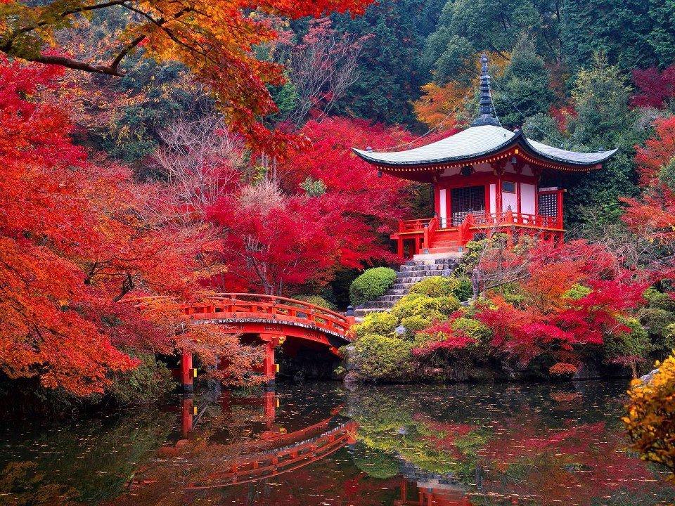 Inspirierende Urlaubsziele: Japan Rundeise