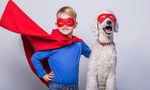 Superhelden Kostüm selber machen : schnell und einfach